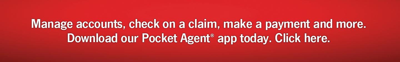 Pocket Agent