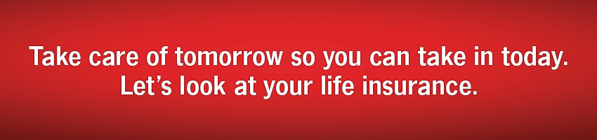 State Farm Life Quote Unique Shane Schirmer  State Farm Insurance Agent In Fairlawn Oh